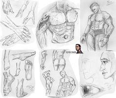 Just some recent sketches I've done in the previous year, showing everyone what I do on my spare time. Even more anatomy!