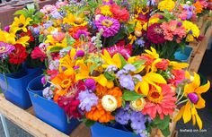 Link to article about all the wonders of the Charlottesville City Market!  Always a beautiful experience!