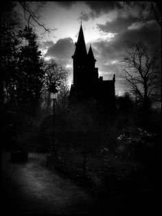 Black and White MY EDIT trees dark forest castle road shAdow Woods medieval Tower landcape pines bleak
