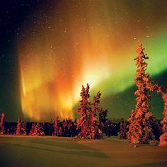Aurora Borealis over Fairbanks