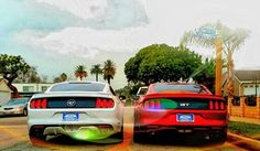 His and hers 2015 Mustangs Mustang Old, 2015 Mustang, Ford Mustang, Me And Bae, Classic Car Insurance, Pony Car, Mustangs, Cars, Ford Mustangs
