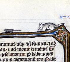 mousehuntBiblia porta, France 13th centuryLausanne, Bibliothèque cantonale et universitaire de Lausanne, U 964, fol. 354r