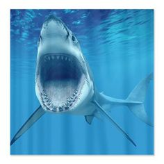 Amazing Shark Shower Curtains by MustHaveGifts on Etsy, $64.00