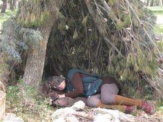Ops, an elf in the bosh.  Looking for www.ilmagicobosco.it
