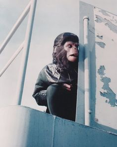 Everything about the mighty PLANET OF THE APES saga, from the original novel, via the classic films of the and right up to the 2011 reboot. Classic Cartoon Characters, Classic Cartoons, Saga, Plant Of The Apes, Linda Harrison, James Whitmore, Image Film, Cornelius, Music Film