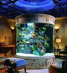 This Fish tank is Amazing!!! I would love to have something like this.