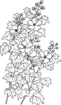 Preto e branco ilustração floral - preto e branco, folhagem