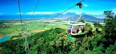 Skyrail Rainforest Cableway, Cairns Australia. We rode up in car #13! It's really up there!