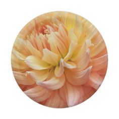Glowing Dahlia Floral 7 Inch Paper Plate #partyideas #partysupplies