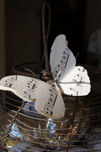 Papillon joyeux
