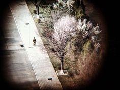 Matt Hulse's provocative series Sniper wins the the Felix Schoeller Gold Award Photo Series, North Korea, Asia, Country Roads, Photography, Life, Image, Interior Design, Gold
