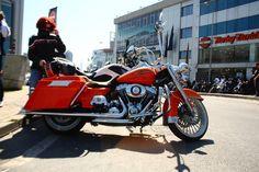 motorcycle, harley, davidson, chopper, bike, turkey, Harley Davidson, open, house, party