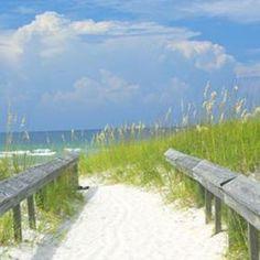 Gulf Shores, Alabama beach...yes!