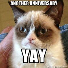 Grumpy cat Anniversary