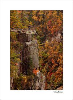 Tallulah Gorge, Georgia...I miss seeing the fall colors