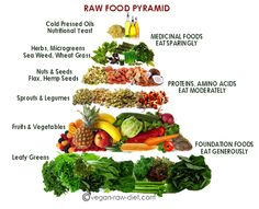 Almost Raw Vegan Food Pyramid