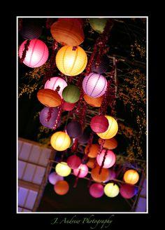 Lampions chinois dans un jardin accrochés à un arbre