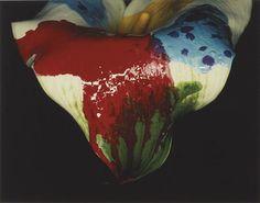 raveneuse:  NOBUYOSHI ARAKI Painting Flower,2004