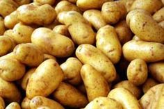 Bulk cooking potatoes (some freezer recipes) freezer-cooking Bulk Cooking, Freezer Cooking, Freezer Meals, Freezer Recipes, Batch Cooking, Cooking Ideas, Diet Recipes, National Potato Day, Dehydrate Potatoes