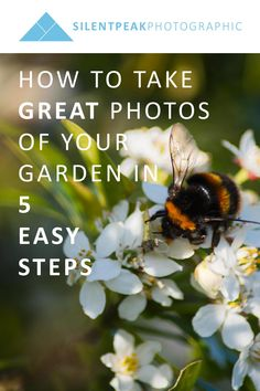 Whatever camera you own, take wonderful, print-worthy photographs of your garden using these five essential tips.