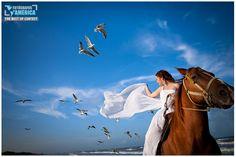 Wedding Photographer Pedro Damian -- Beach Bride