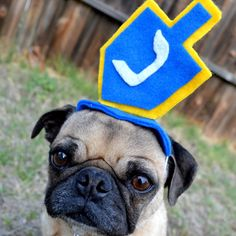 Hanukkah Toy Holiday Decor  HANUKKAH Picture Prop - Chanukah DREIDEL pet HAT fits all sizes. $14.00, via Etsy.