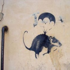 invasion of the Rat Patrol - street art . Banksy . Rat. 000