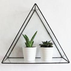 Part of the Mix'n'Match Primary Collection, The Euclid Triangle Wall Display Shelf creates a unique display for your growing air plant collection or Glass Shelf Brackets, Glass Wall Shelves, Display Shelves, Display Case, Shelving, Circle Wall Shelf, Regal Display, Triangle Wall, Cut Glass