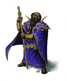 Varram from Rise of Tiamat adventure. Art by Bryan Syme