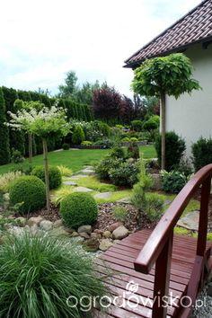 Garden Design - New ideas Landscape Boarders, House Landscape, Garden Landscape Design, Privacy Landscaping, Front Yard Landscaping, Evergreen Garden, Backyard Retreat, Plantation, Garden Cottage