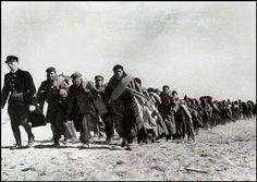 Réfugiés rspagnols sur la route de l'exode 1939