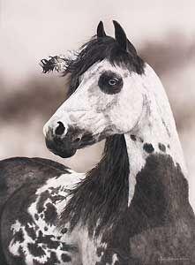 Eagle's Gift - Judy Larson - World-Wide-Art.com - $650.00 #JudyLarson #Horses