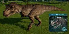T Rex Jurassic Park, Jurassic Park Poster, Jurassic Park Series, Jurassic Park World, Dinosaur Art Projects, Dinosaur Sketch, Dino Park, Big Cats Art, Tiger Art