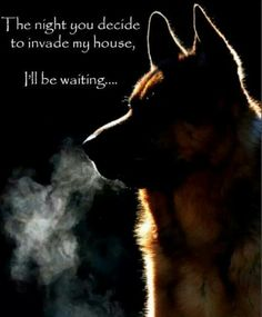 Yes... my gang of dogs: GSD, Min Pin, German Pinscher and Yorkie-Chon. My eclectic group will go crazy, and if that doesn't stop you, then perhaps a 9mm will...