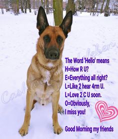 The Word 'Hello' means H=How R U? E=Everything all right? L=Like 2 hear 4rm U. L=Love 2 C U soon. O=Obviously, I miss you! Good Morning my friends.  www.facebook.com/cash.von.badeleben