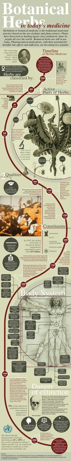 History of Herbalism in an infographic!