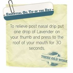 Relieve post nasal drip with one lavender drop