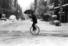 VELOCIPEDE~unicycle