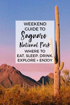 Saguaro National Park :: Best things to do and see in Saguaro National Park and around Tucson Arizona