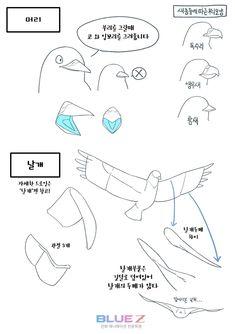#HowToDrawbird #Bird #동물그리기 #동물드로잉 #새드로잉 #블루젯 #BlueZ Animal Sketches, Animal Drawings, Cool Drawings, Art Sketches, Illustrator Tutorials, Art Tutorials, Drawing Tips, Drawing Reference, Moe Manga