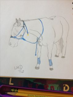 """""""Jessie"""" drawn by Lauren Denard 7/4/16 requested by @Runningjessie hope you like it as much as I!"""