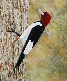 silver linings quilting pattern redheaded woodpecker