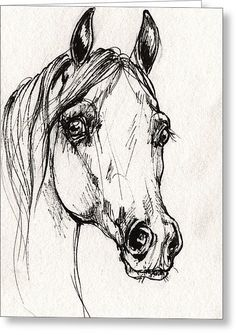 Arabian Horse Sketch 2014 06 16 A Greeting Card by Angel Tarantella