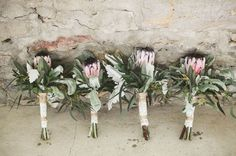 Proteas in Wedding ✈ Flower Feature