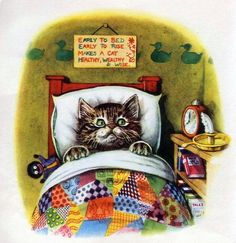 Early to bed; Early to Rise makes a cat healthy, wealthy and wise