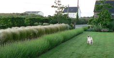 A Seaside Landscape in Northern France: This look would frame my farm out beautifully without adding chaos . . .