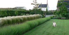 A Seaside Landscape in Northern France