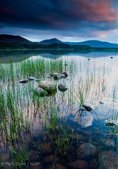 Loch Morlich, Cairngorms National Park, Scotland Cairngorms National Park, Scotland Travel, Lighthouse, Travel Inspiration, National Parks, Castle, Tours, Mountains, Places