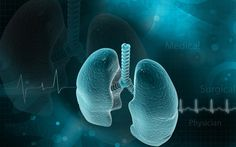 """<span class=""""entry-title"""">COPD Exacerbations Linked to Increased Levels of Lung Neuropeptide</span><span class=""""entry-subtitle"""">Study finds significant association between high VIP levels and acute COPD exacerbations </span>"""