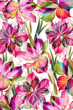 """Floral Fantasia – Illuminated Lily – DIGITAL PRINT FABRIC The digitally printed flowers come from the """"Flora Fantasia"""" collection by … Flower Wallpaper, Wallpaper Backgrounds, Iphone Wallpaper, Floral Pattern Wallpaper, Wallpaper Designs, Trendy Wallpaper, Art Floral, Floral Print Design, Flower Prints"""